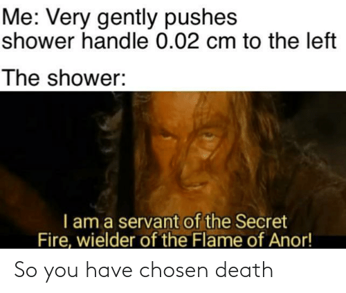 Death: Me: Very gently pushes  shower handle 0.02 cm to the left  The shower:  I am a servant of the Secret  Fire, wielder of the Flame of Anor! So you have chosen death