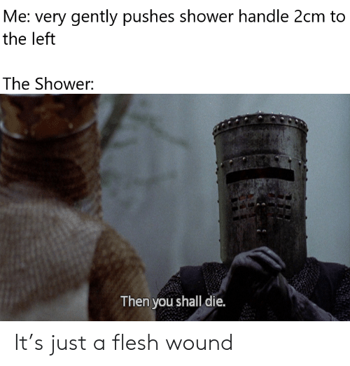 Pushes: Me: very gently pushes shower handle 2cm to  the left  The Shower:  Then you shall die. It's just a flesh wound