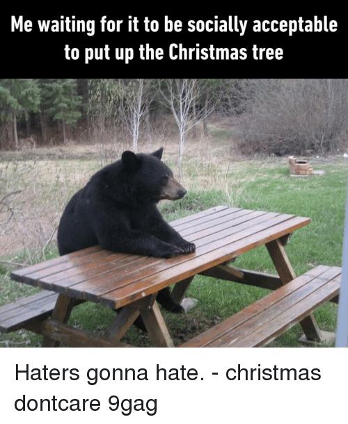 haters gonna hate: Me waiting for it to be socially acceptable  to put up the Christmas tree Haters gonna hate.⠀ -⠀ christmas dontcare 9gag