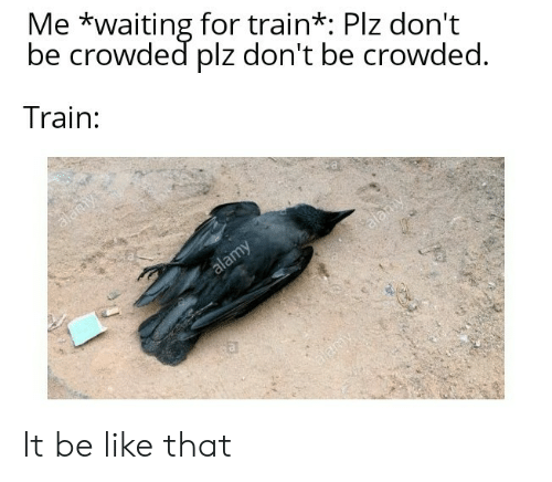 Be Like, Train, and Waiting...: Me *waiting for train*: Plz don't  be crowded plz don't be crowded.  Train:  alany  alamy  alamy  a  alamy It be like that