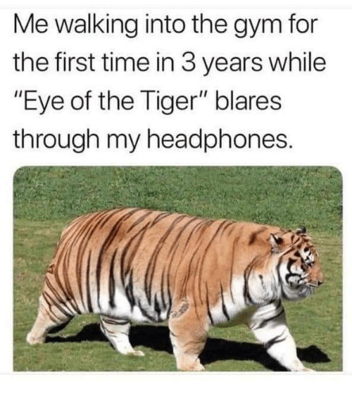 "Gym, Eye of the Tiger, and Headphones: Me walking into the gym for  the first time in 3 years while  ""Eye of the Tiger"" blares  through my headphones."