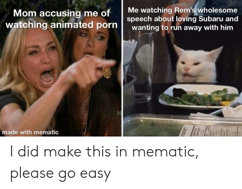 Run, Porn, and Wholesome: Me watching Rem's wholesome  speech about loving Subaru and  wanting to run away with him  Mom accusing me of  watching animated porn  made with mematic I did make this in mematic, please go easy