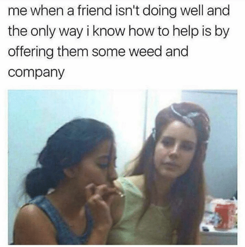 Memes, Weed, and Help: me when a friend isn't doing well and  the only way i know how to help is by  offering them some weed and  company