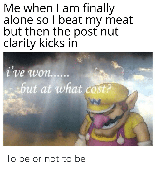to be or not to be: Me when I am finally  alone so I beat my meat  but then the post nut  clarity kicks in  i've won...  but at what cost? To be or not to be