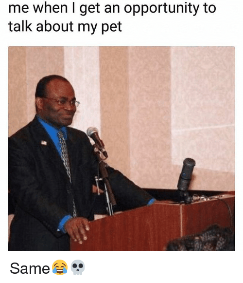 Funny, Opportunity, and Pet: me when I get an opportunity to  talk about my pet Same😂💀