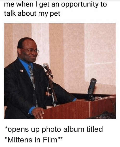 """Opportunity, Girl Memes, and Film: me when I get an opportunity to  talk about my pet *opens up photo album titled """"Mittens in Film""""*"""