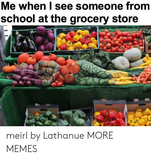 Dank, Memes, and School: Me when I see someone from  school at the grocery store meirl by Lathanue MORE MEMES