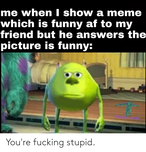 Funny Af: me when I show a meme  which is funny af to my  friend but he answers the  picture is funny: You're fucking stupid.