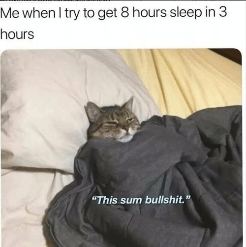 "Bullshit, Sleep, and Sum: Me when I try to get 8 hours sleep in 3  hours  ""This sum bullshit."""