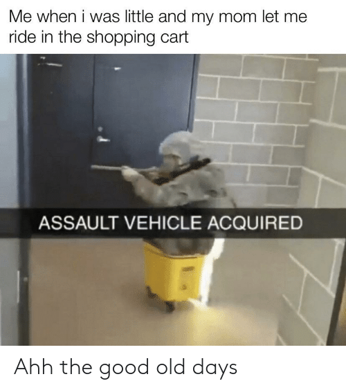Cart: Me when i was little and my mom let me  ride in the shopping cart  ASSAULT VEHICLE ACQUIRED Ahh the good old days