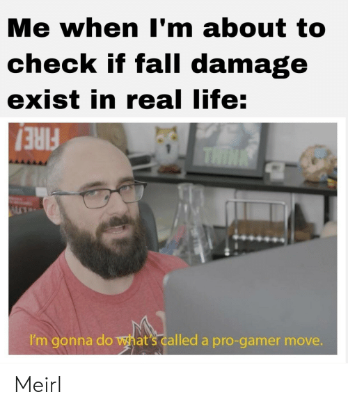 Fall, Life, and Pro: Me when I'm about to  check if fall damage  exist in real life:  THIN  I'm gonna do what's called a pro-gamer move. Meirl