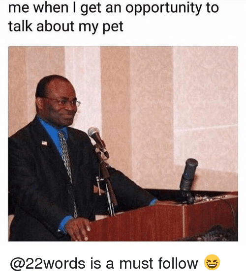 Memes, Opportunity, and 🤖: me when l get an opportunity to  talk about my pet @22words is a must follow 😆