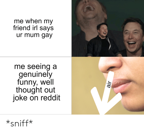 sniff: me when my  friend irl says  ur mum gay  me seeing a  genuinely  funny, well  thought out  joke on reddit *sniff*