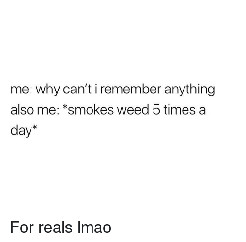 For Reals: me: why can't i remember anything  also me: *smokes weed 5 times a  day* For reals lmao