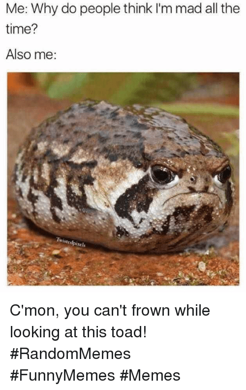 Memes, Time, and Mad: Me: Why do people think I'm mad all the  time?  Also me C'mon, you can't frown while looking at this toad! #RandomMemes #FunnyMemes #Memes