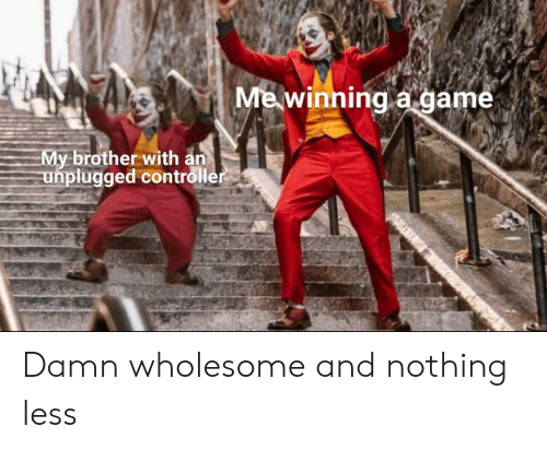 Game, Wholesome, and A Game: Me winning a game  My brother with an  unplugged controller Damn wholesome and nothing less