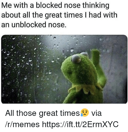 Memes, All The, and Via: Me with a blocked nose thinking  about all the great times l had with  an unblocked nose All those great times😥 via /r/memes https://ift.tt/2ErmXYC