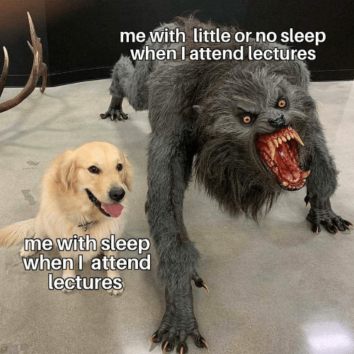 Sleep, No Sleep, and  No: me with little or no sleep  when l attend lectures  me with sleep  whenl attend  lectures