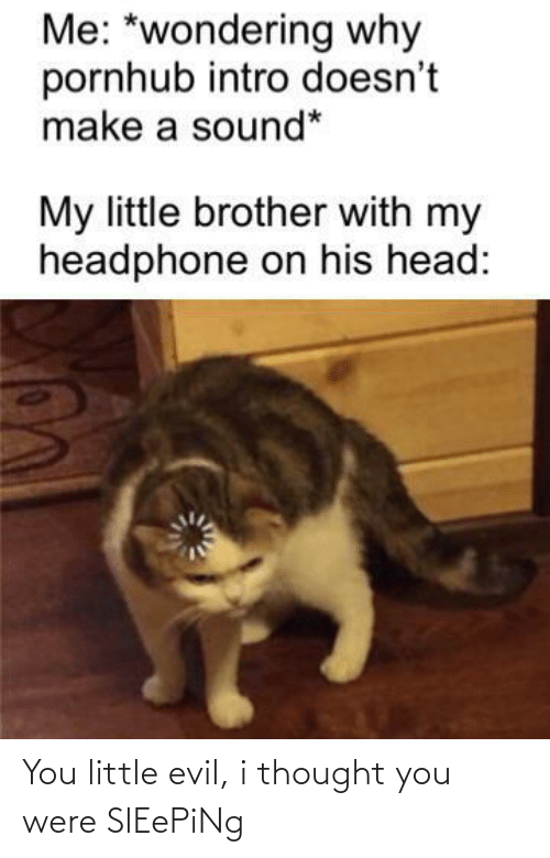 sound: Me: *wondering why  pornhub intro doesn't  make a sound*  My little brother with my  headphone on his head: You little evil, i thought you were SlEePiNg