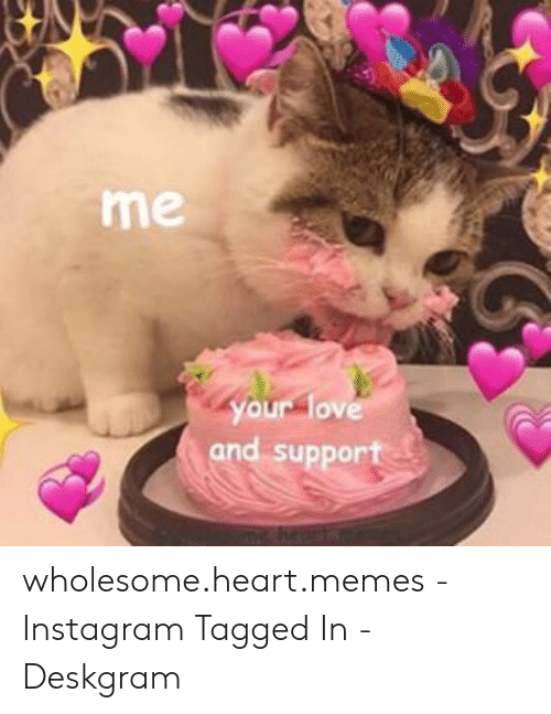 Instagram, Love, and Memes: me  your love  and support wholesome.heart.memes - Instagram Tagged In - Deskgram