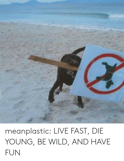 Tumblr, Blog, and Http: meanplastic: LIVE FAST, DIE YOUNG, BE WILD, AND HAVE FUN