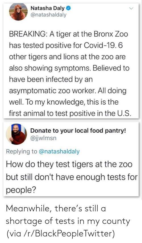 there: Meanwhile, there's still a shortage of tests in my county (via /r/BlackPeopleTwitter)