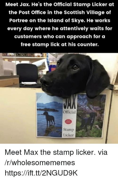 post office: Meet Jax. He's the Official Stamp Licker at  the Post Office in the Scottish Village of  Portree on the Island of Skye. He works  every day where he attentively waits for  customers who can approach for oa  free stamp lick at his counter.  Official  Stamp  Licker Meet Max the stamp licker. via /r/wholesomememes https://ift.tt/2NGUD9K