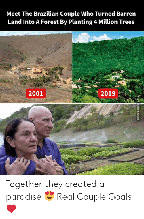 Brazilian: Meet The Brazilian Couple Who Turned Barrern  Land Into A Forest By Planting 4 Million Trees  2019  2001 Together they created a paradise 😍 Real Couple Goals❤️