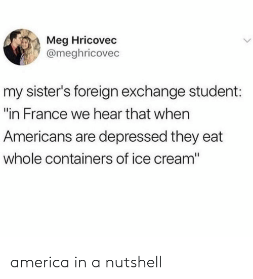 "of ice: Meg Hricovec  @meghricovec  my sister's foreign exchange student:  ""in France we hear that when  Americans are depressed they eat  whole containers of ice cream"" america in a nutshell"