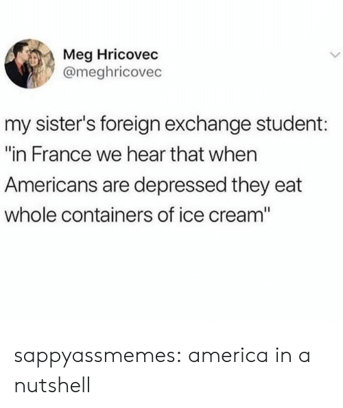 "of ice: Meg Hricovec  @meghricovec  my sister's foreign exchange student:  ""in France we hear that when  Americans are depressed they eat  whole containers of ice cream"" sappyassmemes:  america in a nutshell"