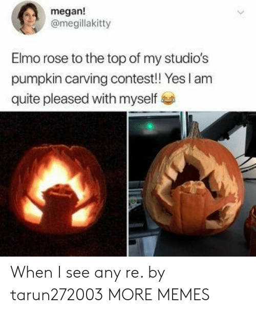 Elmo: megan!  @megillakitty  Elmo rose to the top of my studio's  pumpkin carving contest! Yes I am  quite pleased with myself When I see any re. by tarun272003 MORE MEMES