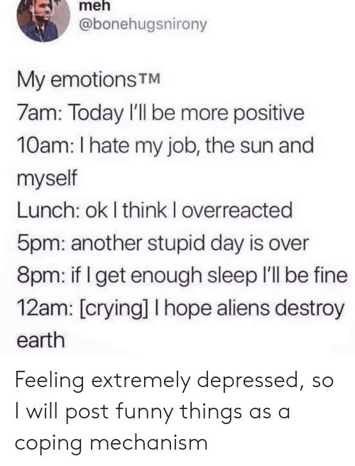 My Job: meh  @bonehugsnirony  My emotions TM  7am: Today I'll be more positive  10am: I hate my job, the sun and  myself  Lunch: ok I think I overreacted  5pm: another stupid day is over  8pm: if I get enough sleep I'll be fine  12am: [crying] I hope aliens destroy  earth Feeling extremely depressed, so I will post funny things as a coping mechanism