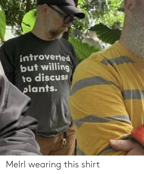 Amazon: MeIrl wearing this shirt