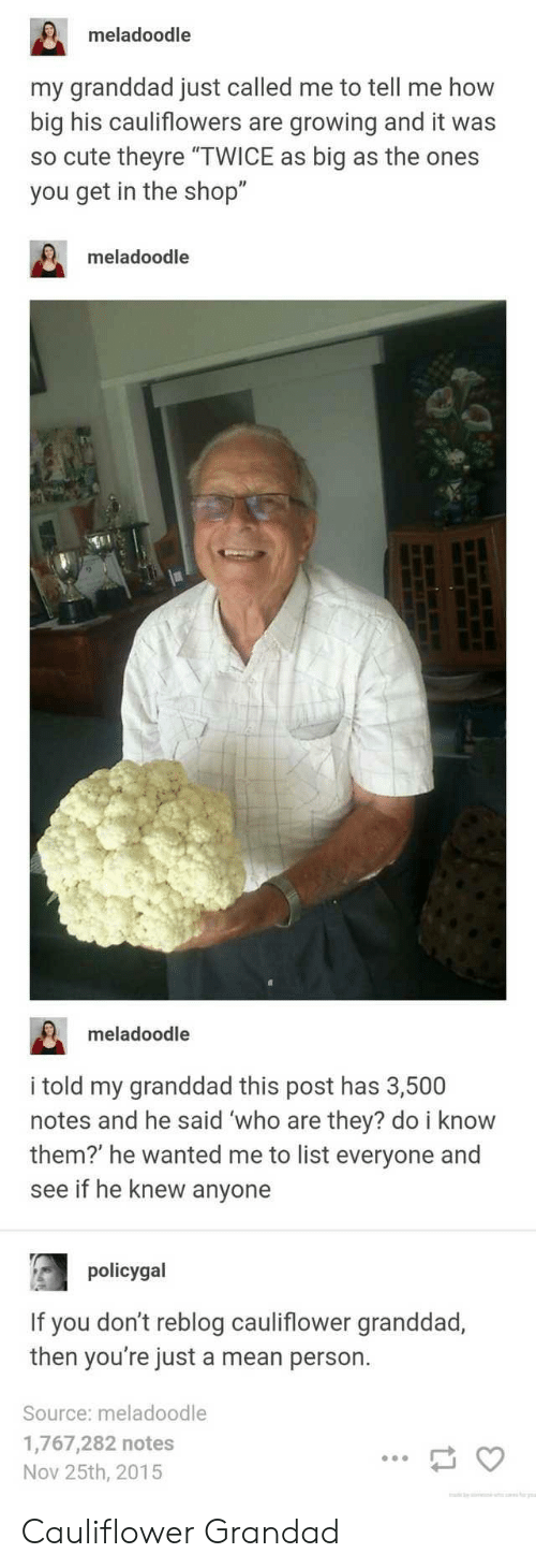 "Bilbo: meladoodle  my granddad just called me to tell me how  big his cauliflowers are growing and it was  so cute theyre ""TWICE as big as the ones  you get in the shop""  meladoodle  meladoodle  i told my granddad this post has 3,500  notes and he said 'who are they? do i know  them?' he wanted me to list everyone and  see if he knew anyone  policygal  If you don't reblog cauliflower granddad,  then you're just a mean person.  Source: meladoodle  1,767,282 notes  Nov 25th, 2015 Cauliflower Grandad"