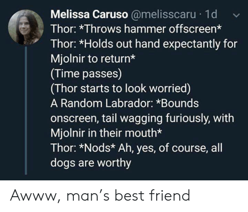 Best Friend, Dogs, and Best: Melissa Caruso @melisscaru 1d  Thor: *Throws hammer offscreen*  Thor: *Holds out hand expectantly for  Mjolnir to return*  (Time passes)  (Thor starts to look worried)  A Random Labrador: *Bounds  onscreen, tail wagging furiously, with  Mjolnir in their mouth*  Thor: *Nods* Ah, yes, of course, all  dogs are worthy Awww, man's best friend