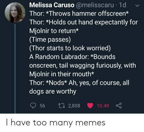 tail: Melissa Caruso @melisscaru 1d  Thor: *Throws hammer offscreen*  Thor: *Holds out hand expectantly for  Mjolnir to return*  (Time passes)  (Thor starts to look worried)  A Random Labrador: *Bounds  onscreen, tail wagging furiously, with  Mjolnir in their mouth*  Thor: *Nods* Ah, yes, of course, all  dogs are worthy  1i2,808  56  10.4K I have too many memes