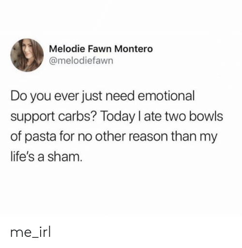 Today, Reason, and Irl: Melodie Fawn Montero  @melodiefawn  Do you ever just need emotional  support carbs? Today I ate two bowls  of pasta for no other reason than my  life's a sham. me_irl