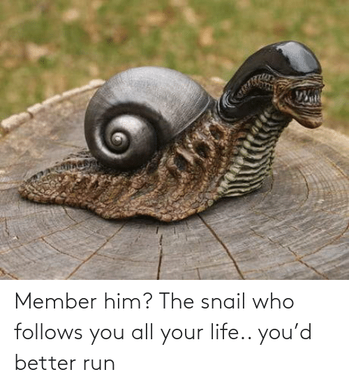 D: Member him? The snail who follows you all your life.. you'd better run