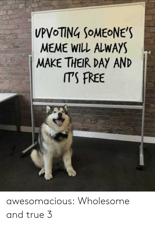 Always Make: MEME WILL ALWAYS  MAKE THEIR DAY AND  ITS FREE awesomacious:  Wholesome and true 3