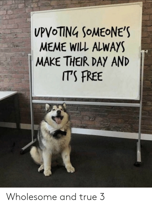Meme, True, and Free: MEME WILL ALWAYS  MAKE THEIR DAY AND  ITS FREE Wholesome and true 3
