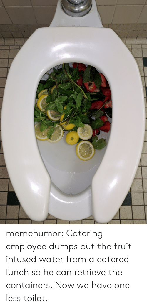 Catering: memehumor:  Catering employee dumps out the fruit infused water from a catered lunch so he can retrieve the containers. Now we have one less toilet.