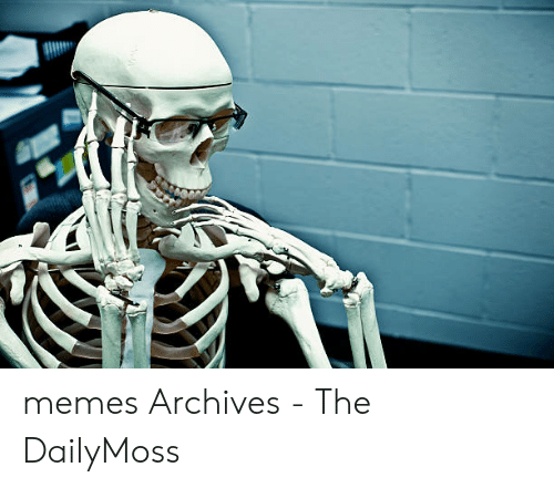 Dailymoss: memes Archives - The DailyMoss