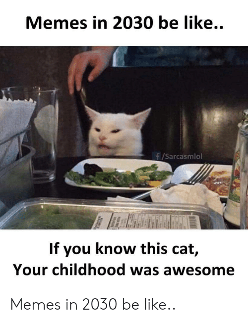 Know This: Memes in 2030 be like..  f/Sarcasmlol  If you know this cat,  Your childhood was awesome Memes in 2030 be like..
