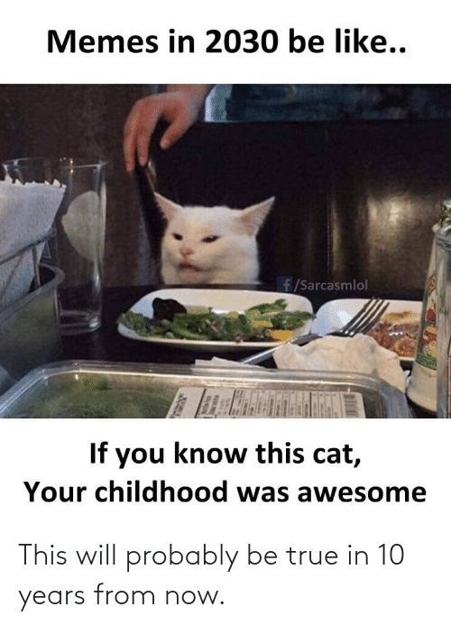 Childhood: Memes in 2030 be like..  f/Sarcasmlol  If you know this cat,  Your childhood was awesome This will probably be true in 10 years from now.
