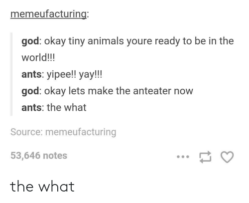 Animals, God, and Okay: memeufacturing:  god: okay tiny animals youre ready to be in the  world!!!  ants: yipee!! yay!!!  god: okay lets make the anteater now  ants: the what  Source: memeufacturing  53,646 notes the what