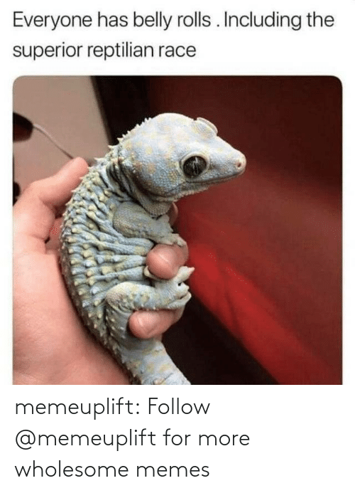 Wholesome: memeuplift: Follow @memeuplift​ for more wholesome memes