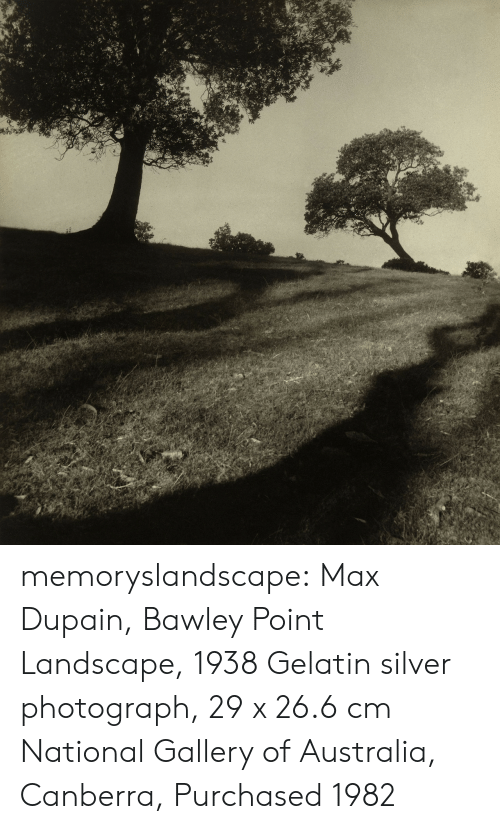 gelatin: memoryslandscape: Max Dupain, Bawley Point Landscape, 1938 Gelatin silver photograph, 29 x 26.6 cm National Gallery of Australia, Canberra, Purchased 1982
