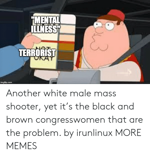 """Dank, Memes, and Target: MENTAL  ILLNESS""""  TERRORIST  imgflip.com Another white male mass shooter, yet it's the black and brown congresswomen that are the problem. by irunlinux MORE MEMES"""