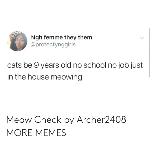 hilarious memes: Meow Check by Archer2408 MORE MEMES