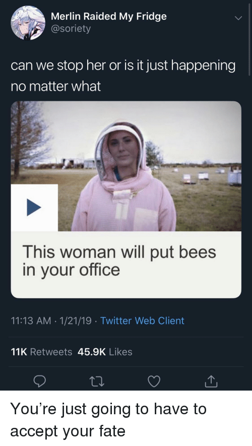 Twitter, Office, and Fate: Merlin Raided My Fridge  @soriety  can we stop her or is it just happening  no matter what  This woman will put bees  in vour office  11:13 AM 1/21/19 Twitter Web Client  11K Retweets 45.9K Likes You're just going to have to accept your fate